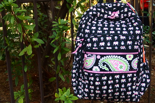 Campus Backpack in Pink Elephants