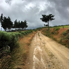 #promenade #grandrieu #lozère #randonnée