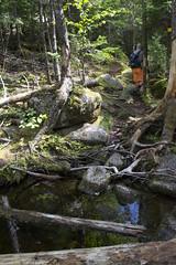 Musquodoboit Trailway