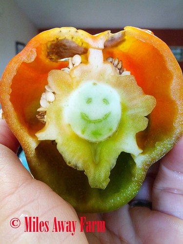 Happy Bell Pepper