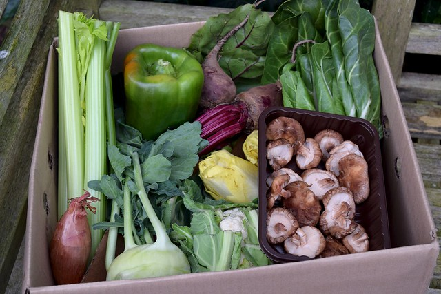 Abel & Cole Medium Gourmet Veg Box