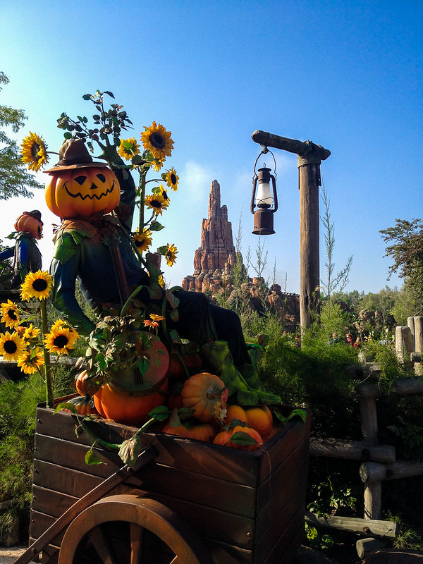 Frontierland Pumpkin Scarecrows in Disneyland
