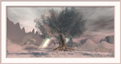 landscape secondlife
