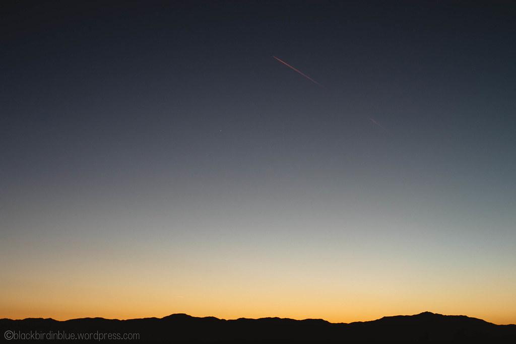 Sunset at Joshua Tree