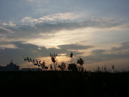 아침산책 | 공릉천