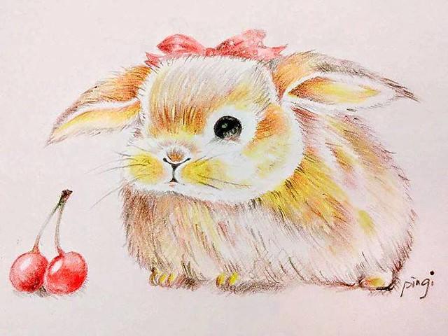 fat肥滋兔色鉛筆,手繪圖鴉,彩鉛插畫