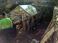 coop renovation IMG_2645