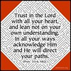 Trust in the Lord with all your heart, and lean not on you own understanding.  In all your ways acknowledge Him and He will direct your paths.  #trust #faith #maze