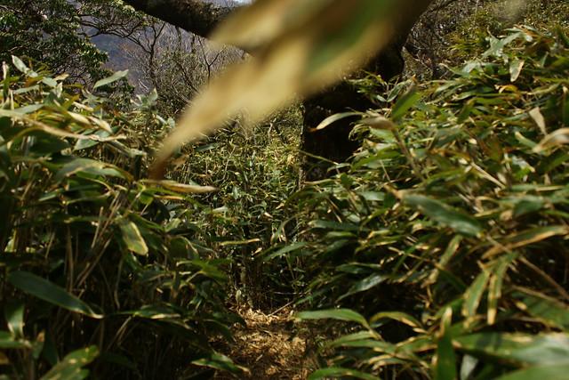 2014-05-06_02376_九州登山旅行.jpg