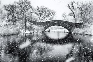Snowing, Central Park