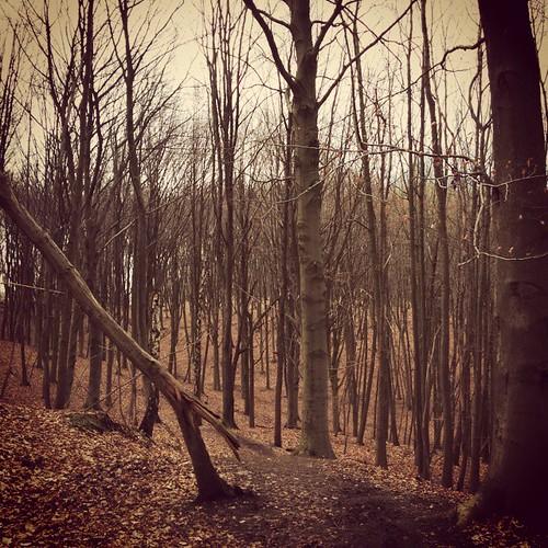 Het is rustig op den berg. #hiking