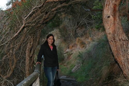 Scenic Walks