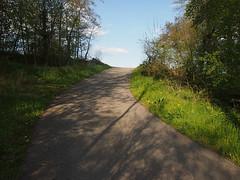 paul-zoller-lanes_377