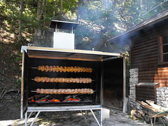 backyard, kitchen appliance, outdoor grill, grilling, masonry oven, meat, food, dish, cuisine,