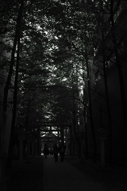 花園神社 Hanazono shrine, Shinjuku Tokyo, 02 Dec 2014. 017