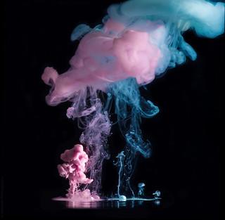 Little Jellyfish // 16 12 14