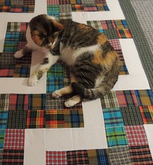 Grace helps baste the quilt
