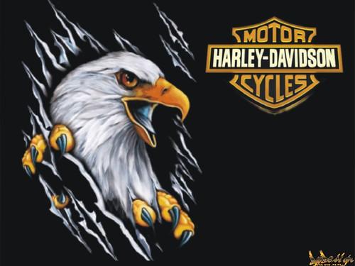 Harley_Davidson _007