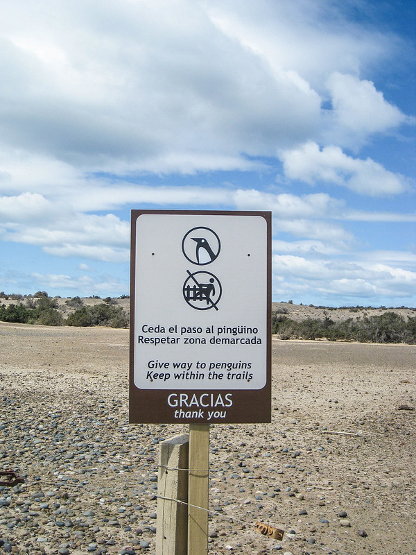Patagonia 218.jpg