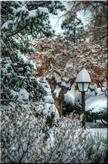 Cliche Saturday-Snowy Saturday In HDR-HCS!