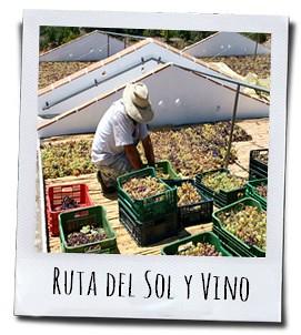 De route van zon en wijn in de Axarquia streek