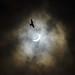 Eclipse by MMcStudio