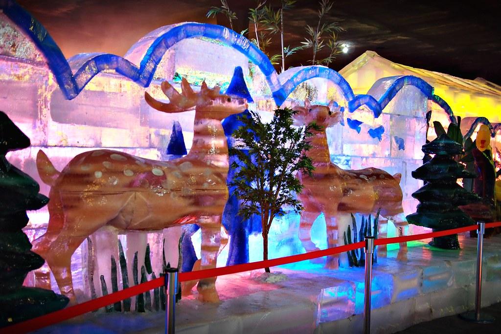 台中高鐵-2015正宗哈爾濱冰冰燈冰雕展-67