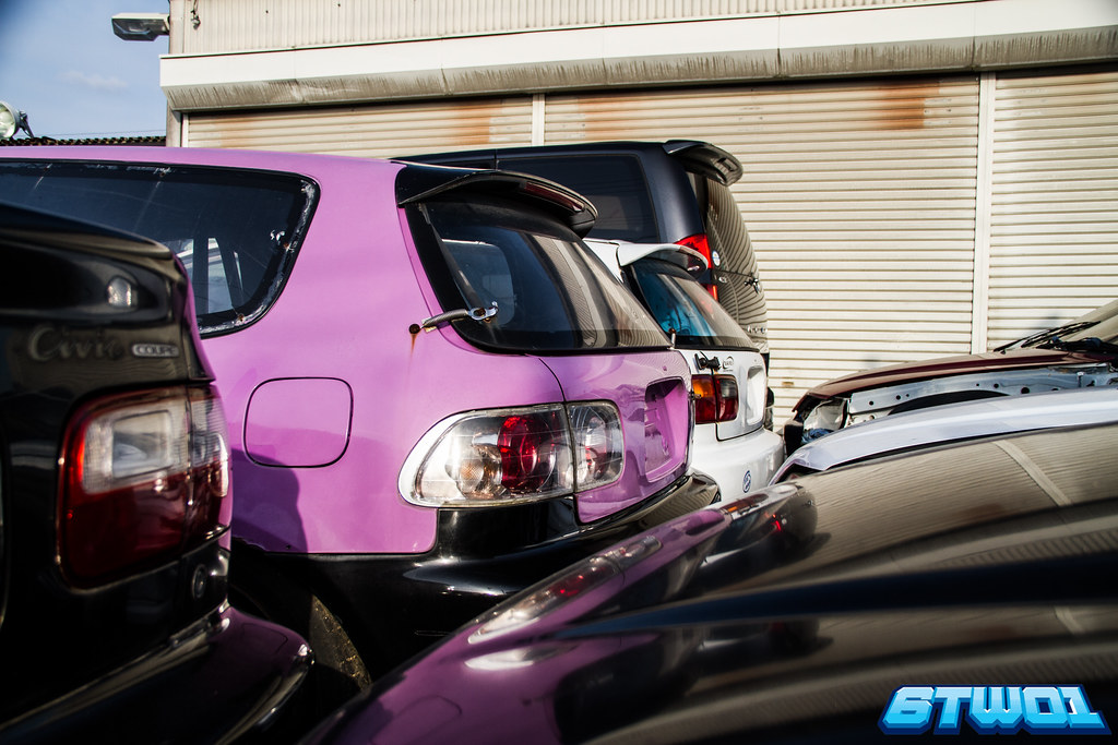back of cars including purple