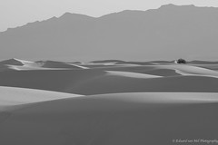 White Sands, New Mexico, in Black and White at Sunset.