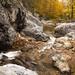 crooked creek by Jon Wisniewski