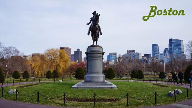 BostonD