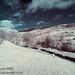 Mill Race, Reeth - IR by Sylvia Slavin ARPS (woodelf)