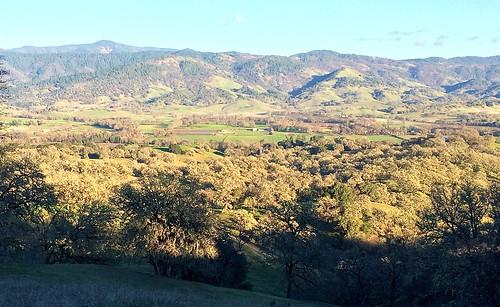 california landscape mendocinocounty pottervalley