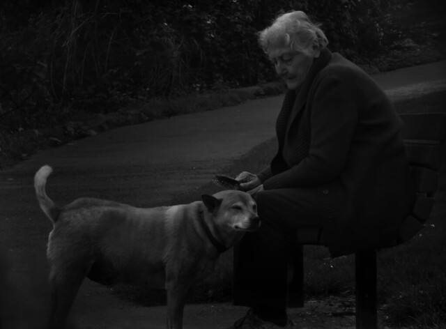 old woman with her dog in Golden Gate Park, San Francisco (2015)