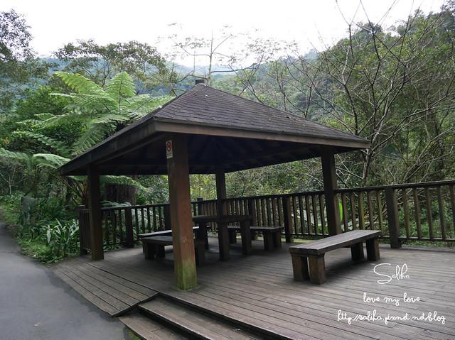 烏來景點內洞森林遊樂區 (36)