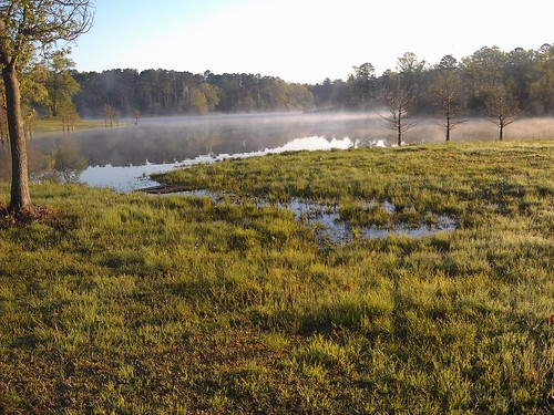 texas campground marioncounty lakeothepines