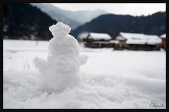 日本京都南丹市_美山雪祭.60
