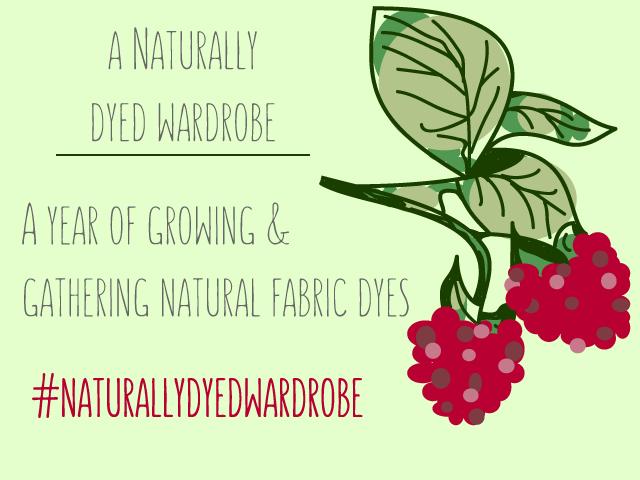 #naturallydyedwardrobe Logo