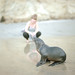 Amy and Baby Sea Lion, Torrey Pines State Beach