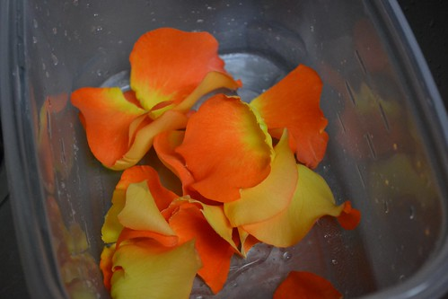Pink/Orange/Yellow Petals