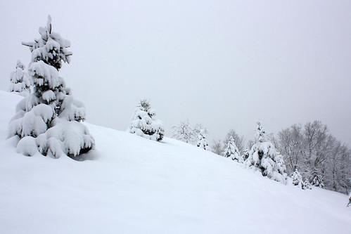 20150305_SNOW_098