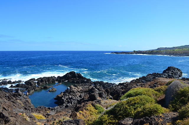 Rock pools, Buenavista del Norte, September, Tenerife