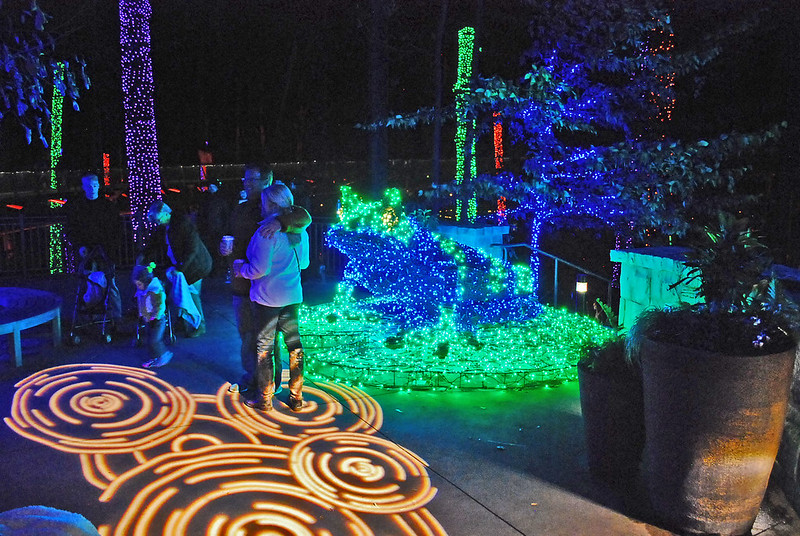 Atlanta Botanical Gardens Christmas Lights