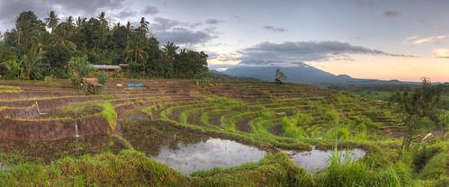 bali ricepaddies hdr riceterraces mountagung candidasa ptgui gunungagung