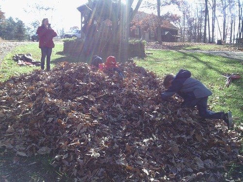 Nov 15 2014 Raking at Janet Puffenbarger (3)