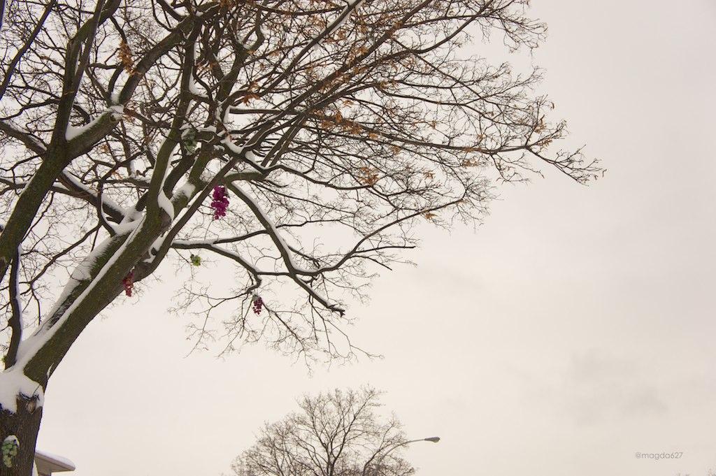 anteketborka.blogspot.com,   ciel 12 5