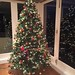 This year's Christmas tree!