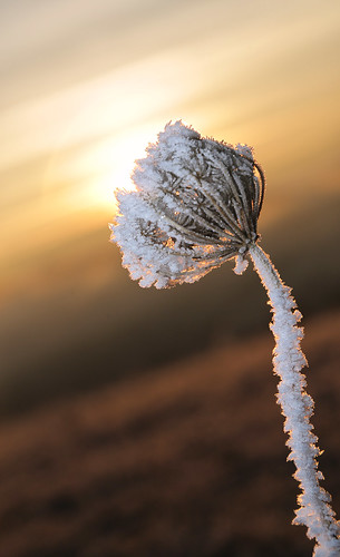 france ice sunrise canon flash proxi 5dmarkiii