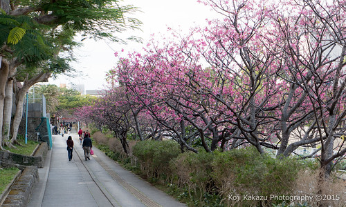 与儀公園 | Naha City, Okinawa 09