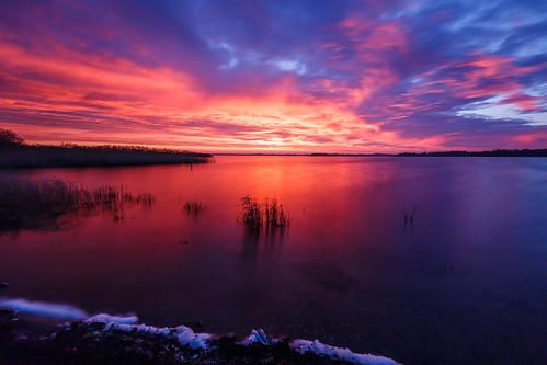 longexposure sunrise reeds athlone hodsonbay loughree canon6d